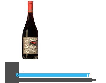 Terra Andina Pinot Noir